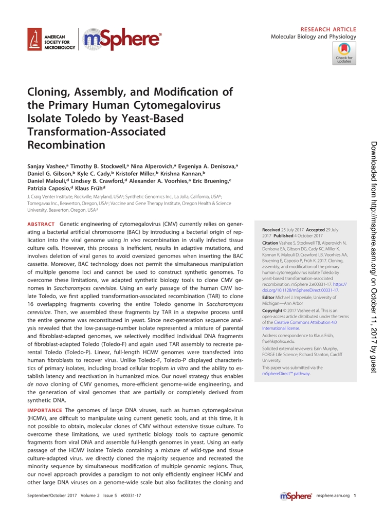 cloning-assembly-and-modification-of-the-primary-human-cytomegalovirus-isolate-toledo-by-yeast-based-transformation-associated-recombination